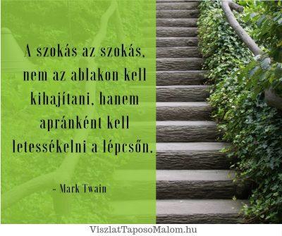 Sikeres idézet Mark Twain